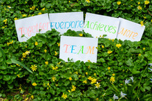 Team Definition Concept Explained As Together Everyone Achieves More Handwritten On Cardboard Sheets Placed On A Garden Floor Background