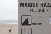 Shark Warning Sign At Californ...