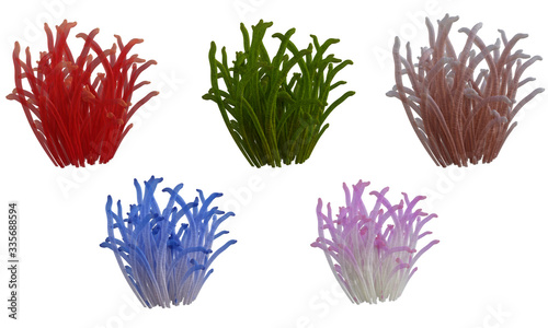 Fotomural Set of assorted corals isolated on white, 3d render.