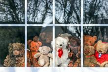 Group Of  Teddy Bears Sitting ...