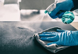 Surface sanitizing against COVID-19 outbreak. Home cleaning spraying antibacterial spray bottle disinfecting against coronavirus wearing nitrile gloves. Sanitize hospital surfaces prevention. - 335746181