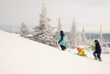 Family of snowboarders walking on mountain top. Sunny holiday in ski resort, snow covered spurs trees, mountains landscape