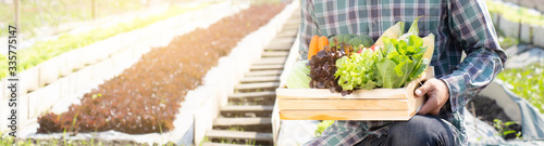 Photo Young asian man harvest and picking up fresh organic vegetable kitchen garden in basket in the hydroponic farm, agriculture for healthy food and business concept, banner website