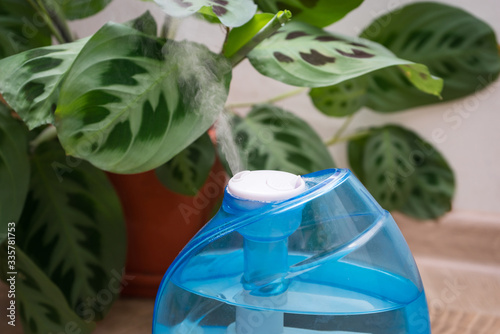 Photo A working humidifier and arrowroot on the background