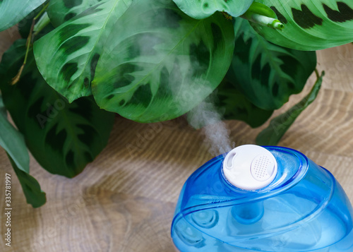 A working humidifier and arrowroot on the background Canvas Print