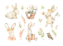 Watercolor Illustrations With ...