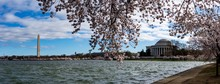 Panoramic View Of The Lake Sur...
