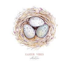 Hand Drawn Watercolor Bird Nest With Eggs, Easter Spring Design