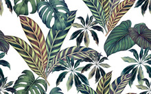 Watercolor Painting Colorful Tropical Leaf,green Leave Seamless Pattern Background.Watercolor Hand Drawn Illustration Tropical Exotic Leaf Prints For Wallpaper,textile Hawaii Aloha Summer Style..