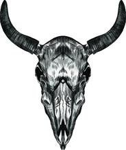 Skull Cow Cattle Horns Mystici...