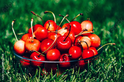 Fotografie, Obraz Fresh ripe organic Rainier Cherries in  bowl