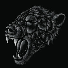 Lion Head With Black Background
