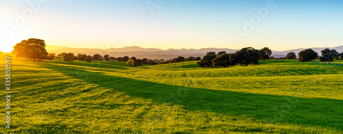 Fototapeta sunset over green field with sunlight, green grass, bush, trees, shadows and mountains in background obraz