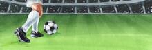 Professional Football Soccer P...