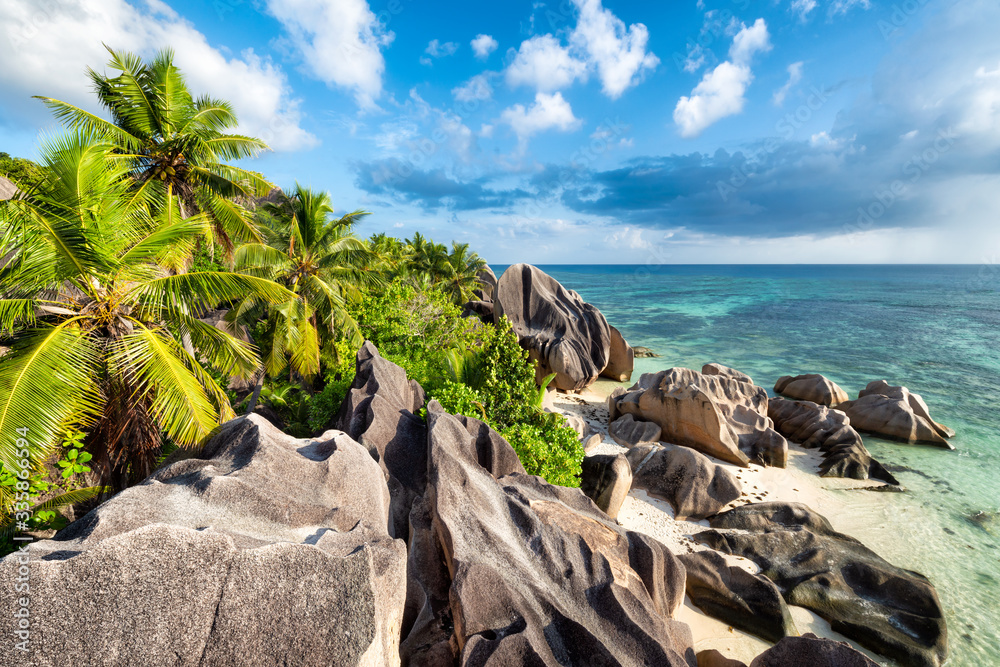Palm trees and rocks on the tropical island of La Digue, Seychelles, Africa