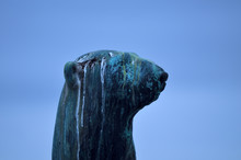 Polar Bears Head In Copper