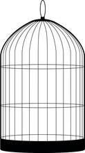 Birdcage Isolated On White