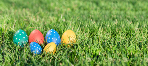 Photo six bright easter eggs of different colors lie in green grass, hidden eggs,  cel