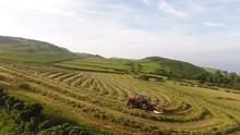 Massey Ferguson 390T Rowing Grass For Silage