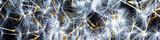 Fototapeta Dmuchawce - Panoramic view macro dandelion seeds on a black background