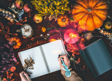 Cozy Autumn Home Lifestyle. Fe...
