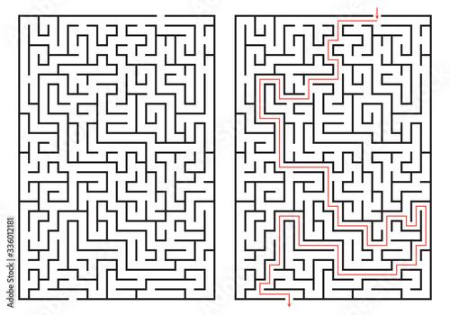 Labyrinth game Canvas Print