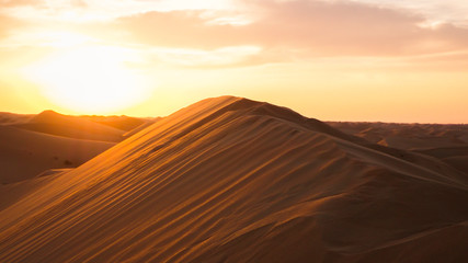 Amazing desert sunset. Beautiful Arabian desert with warm colors. Colorful contours of sand dunes at Abu Dhabi.
