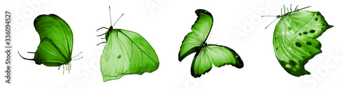 Fotografie, Tablou Color natural and watercolor butterflies , isolated on white background