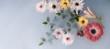 Leinwandbild Motiv Arrangement of therapeutical flowers
