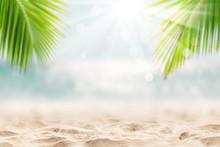 Landscape Of Tropical Summer. ...
