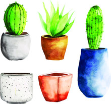 Watercolor Cactus With Pot Single Element Collection