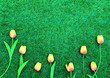 canvas print picture - Pink tulip flowers border on grass background