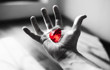 Man Holding Heart In Hands On Black White Background.