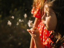 Cute Girl Blowing Dandelion On...