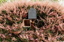 You've Got Mail: Prettiest Mailbox In The Neighborhood