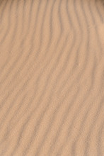 Waves Of Traces Of Wind On Sand In Desert.