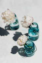 Peonies In Blue Glass Vases And Their Reflections In Direct Sunlight On White Concrete Table