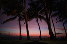 Beautiful Pink Sunsets At The ...
