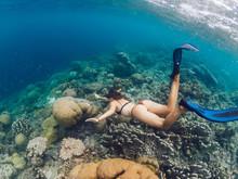 Female Extreme Swimmer In Flip...