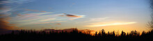Panorama Of Nacreous Clouds In The Morning Over Forest Silhouette