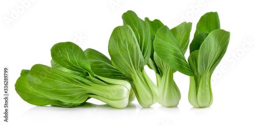 Bok choy vegetable on white background Fotobehang