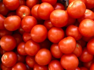 red tomatoes a daily use vegetable