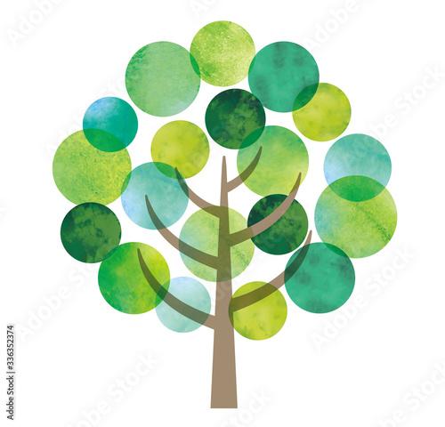 Fotomural 丸い葉の水彩の木
