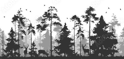 poziome-bezszwowe-wektor-ilustracja-sosnowy-las-ze-zwierzetami-mozesz-usunac-jelenie-lub-ptaki