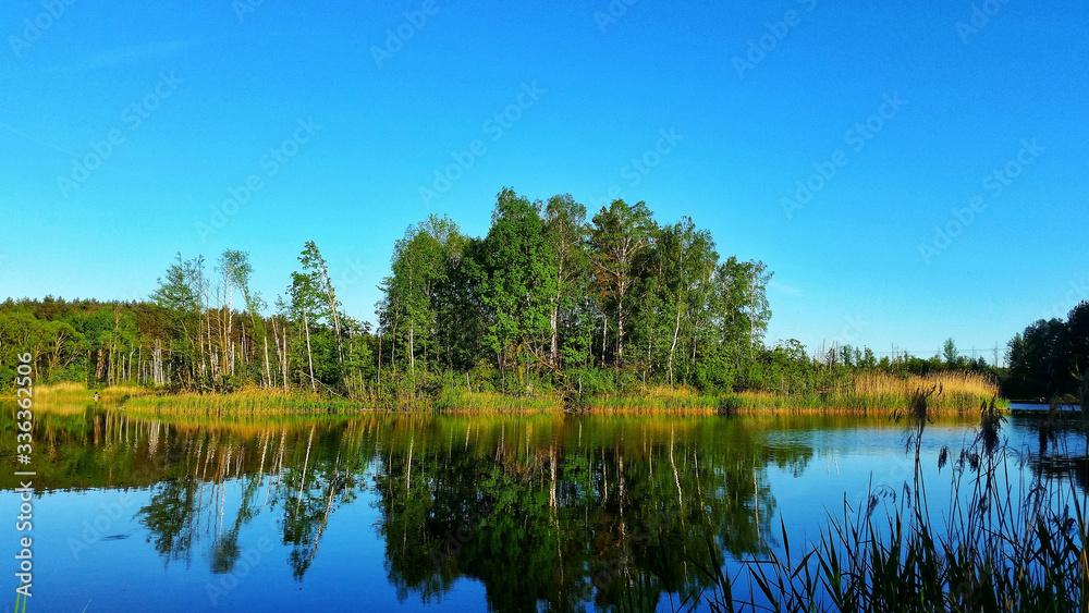 Fototapeta błękitne niebo nad jeziorem w lesie