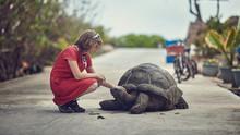 Seychelles, La Digue, A Girl A...
