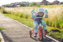 Small Boy Rides A Tricycle On ...