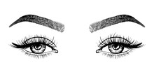 Line Sketched Woman Eyes With ...