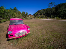 Wreck Of The Pink Car Is No Driver's Door Parked In The Lawn