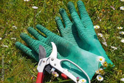 Paire de gants de jardinage avec un sécateur au milieu d'herbe et de pâquerettes Canvas Print